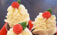 The Cupcake Shoppe Bakery Raleigh