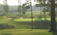 North Carolina Triangle Golf Home